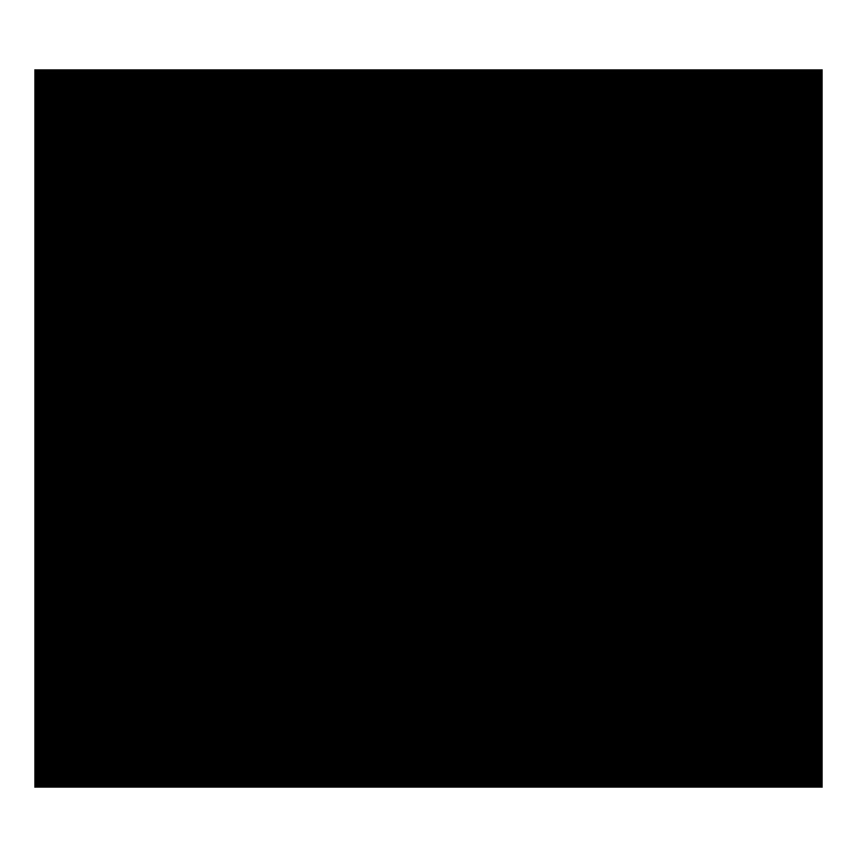לוגו דן גנגינה